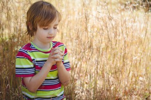 Praying little boy in the park on a sunny day